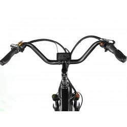 ION Dually  - Dual Motor Electric Fat Tire Mountain Bike Super Cruiser