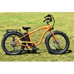 ION EZ Rider Electric Fat Tire Beach Cruiser