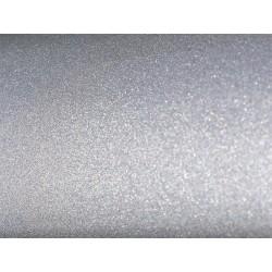 Silver Shimmer Color Chip