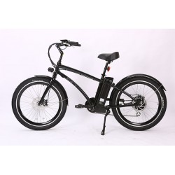 Ion Electric Beach Cruiser. 180mm Disc Brakes with Safety Motor Shut-Off.