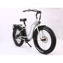 Silver Ion Fat Tire Step Thru Electric Bike. Stylish, Functional and Fun!