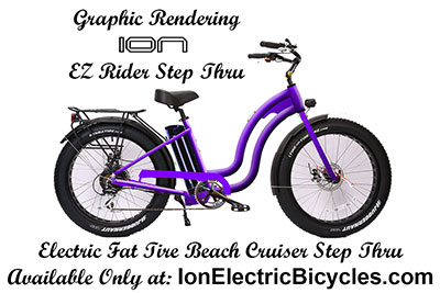 ION Electric Bicycles
